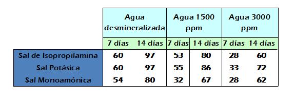 Figura 4 Noticia Acisol